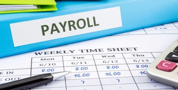 Smart Payroll Services Solved The Problems In Big Organizations