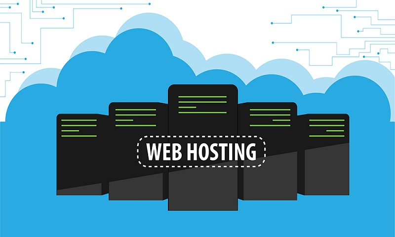 What are website hosting plans and their types?