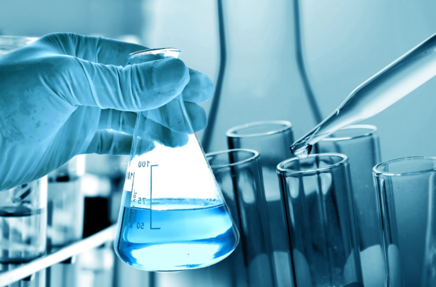 Everything You Need to Know About Laboratory Management