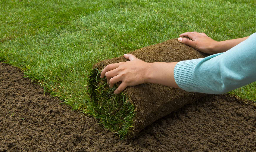 How much does sod cost to install?