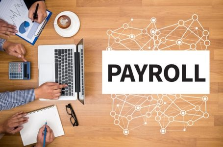 Who Should Use Payroll Software?